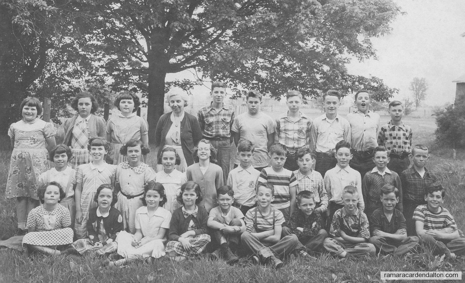 Foley 1954