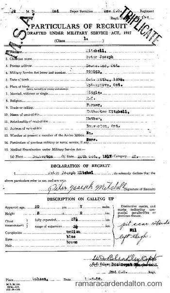 Peter Joseph Mitchell Draft Paper