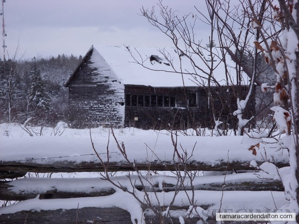 Billy Wlye's Barn --Carden