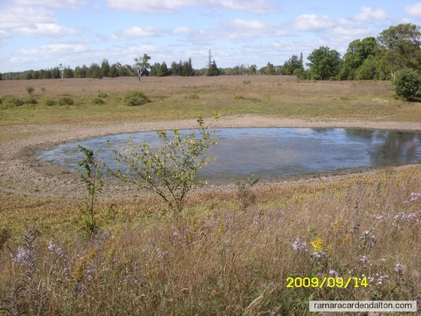 Fogarty's Pond - meteorite landing