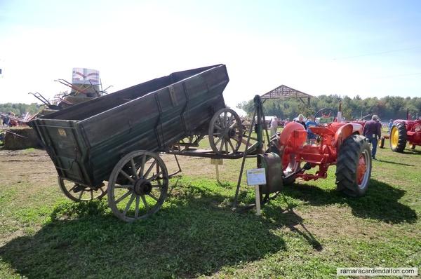 Wagon dumper