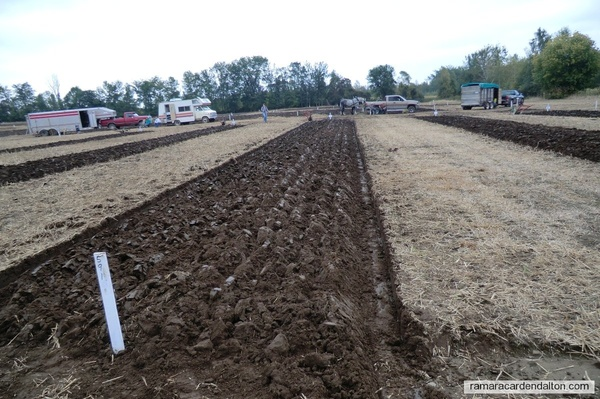 Lands--Furrows and the Art of Ploughing