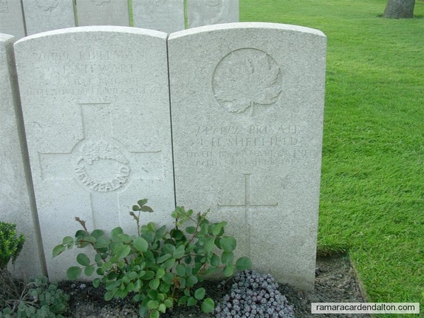 John H. SHEFFIELD, / Lijssenthoek Military Cemetery, Belgium