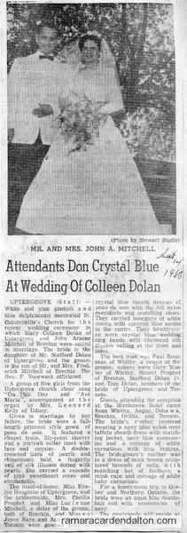 Mitchell-Dolan