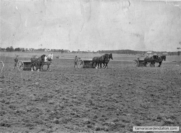 Seeding Wheat 1949