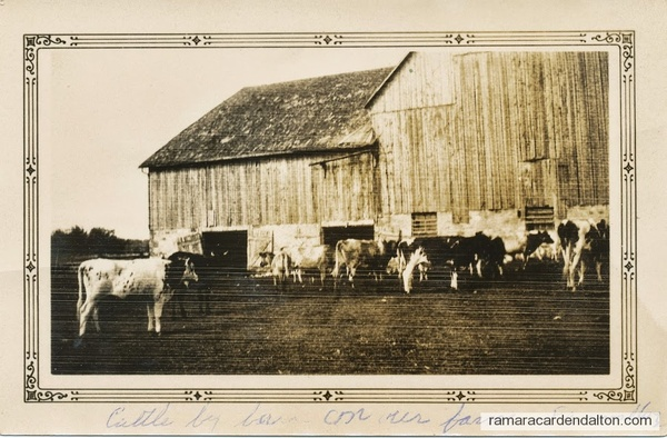 The barn on the Fairvalley Elder farm now owned by Bill Lee