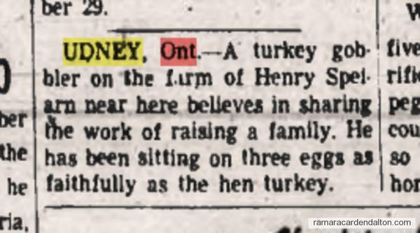 Henry Spearin of Udney 1939