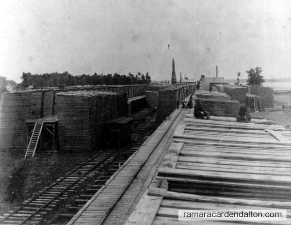 Longford Lumber Co. c.1890