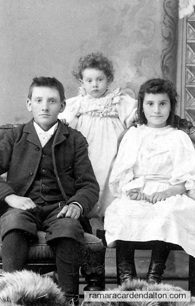 Alexander, Nettie, Lillian-1894-13,8,2 yrs