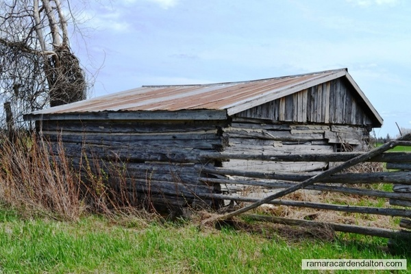 Brechin Old log school circa 1840-1880