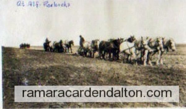 Nine Horse Team --Ploughing