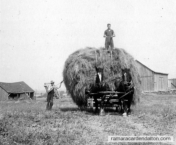 Francis Lee on top, with Basil Harrington making a big hay stack
